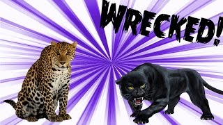 ANGRIEST LEOPARD & PANTHER EVER! - Wrecked #1