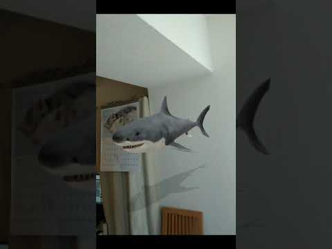 WebARで自宅にサメの動画を表示してみる