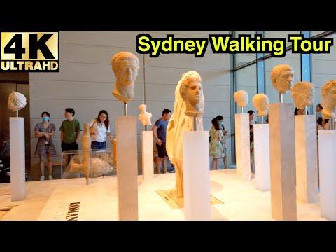 [4K] SYDNEY WALKING TOUR 🎫   NEW CHAU CHAK WING MUSEUM   SYDNEY UNIVERSITY   Australia 🇦🇺