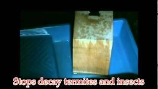 Keep Mold Off Wood