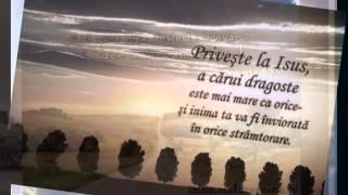 Slauco din Lugoj -  Doina tiganeste  vol 3
