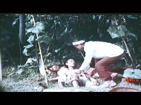 Phim Hài Việt Nam Cũ Hay Nhất: Xem Đi Xem Lại Vẫn Không Thấy Chán !!!