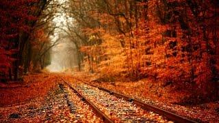 Народні прикмети, прогноз погоди на 14 листопада 2016 року