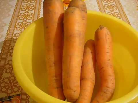 Выбираем семена моркови