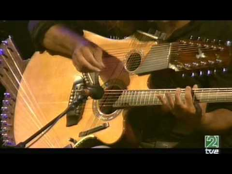 Pat Metheny Pikasso 42-string guitar