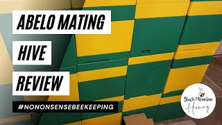 Abelo Mating Hive Review