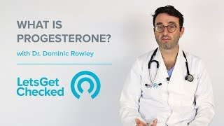 What is Progesterone? | When To Test Progesterone Levels?