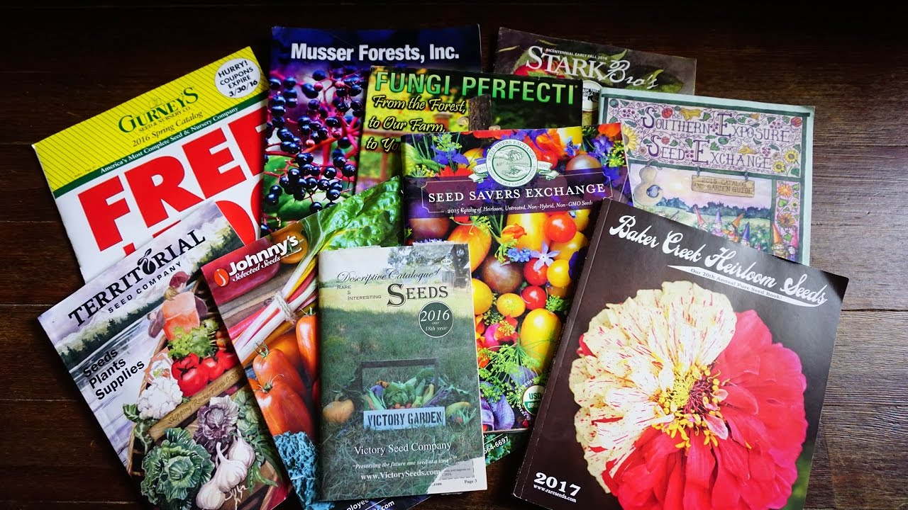 seed catalogs you may not have considered for and home gardeners