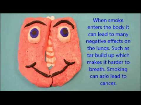 Smoking Stinks! Negative Effects of Smoking & How it Stinks - GBHS Students