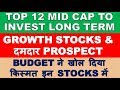 Top mid cap shares to invest for long term | multibagger stock 2019 india investing for profit