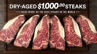 I Dry-Aged a $1,000.00 WAGYU STEAK MSB7 at home!