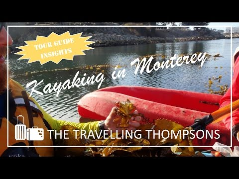 Ocean Kayaking Tour - Monterey Bay Kayaks Tour Guide Insights - Your Review