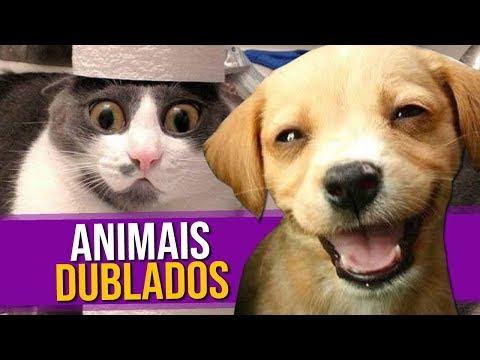 Animais Dublados Episódio 2
