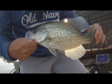Crappie Fishing April 2017.  Arkansas Crappie Fishing!