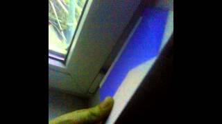 Как сделать откосы из пластиковых панелей?(Видео про то, как сделать откосы на пластиковые окна с помощью пластика! Рассказываем и показываем материал..., 2015-01-09T09:57:26.000Z)
