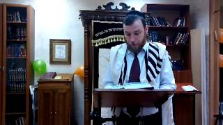 Утренний урок в Jewish Campus. р.Моше Гринберг (04.03.2013)