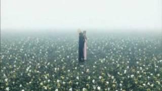 Final Fantasy Advent Children- Linkin Park ( What I've Done)