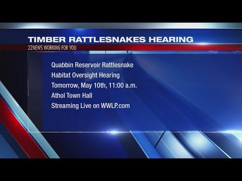 Legislative Committee to host hearing on Rattlesnakes plan