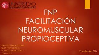 FNP Principios Neurofisiologicos