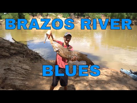 Lower Brazos River Blue Cat