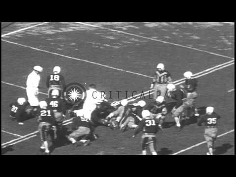 Yale University beats the University of Maine with a score of 38-0 in a game of f...HD Stock Footage