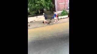 inondations 20.05.2012  alsemberg (beersel)bruxelles