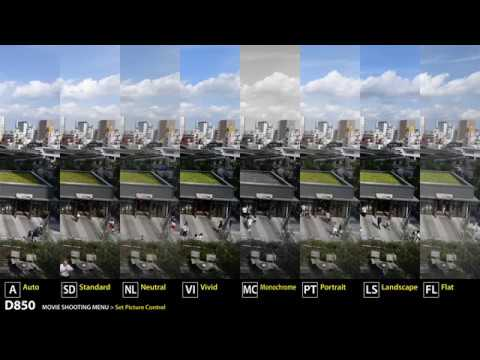 4K UHD Video quality at Nikon D850 | Picture Control and Active D-Lighting & 4K UHD Video quality at Nikon D850 | Picture Control and Active D ... azcodes.com