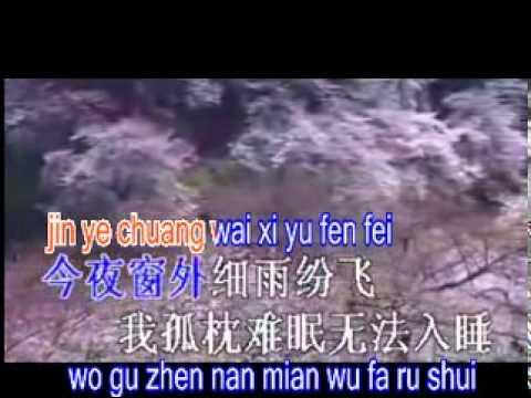 pinyin 我是真的真的爱你wo shi zhen de zhen de ai ni