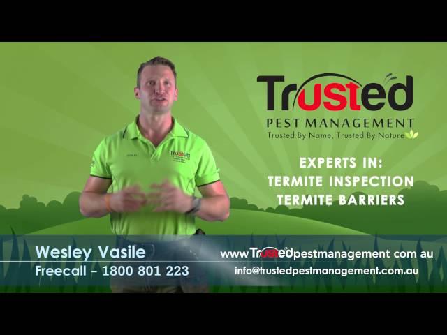 Trusted Pest Management VBC Wesley 2 Final