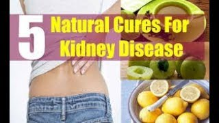 5 Natural Cure for Kidney Disease by Doc Willie Ong