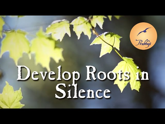 Develop Roots in Silence - Prabhuji