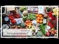 Co nakupujeme za potraviny? 🍎🍋🍉🥦 CO JÍME? Náš velký NÁKUP na 14 dní!!  | Markéta Venená