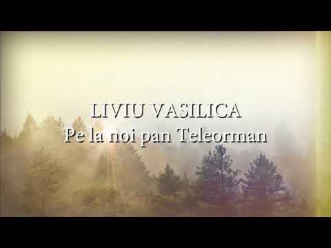 Liviu Vasilica - Pe la noi pan Teleorman (versuri, lyrics, karaoke)