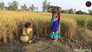Comedy Video || धान के खेत मे हुआ घोटाला  || Shivani Singh & Akhilesh Raj Bhojpuriya, thumbnail