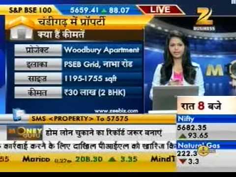 Money Guru Zee Business - 27th June 2013 Shrinivas Rao, CEO