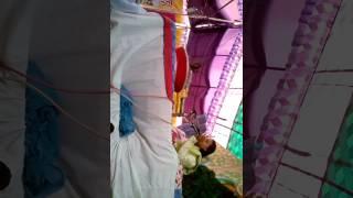 Chitra Vichitra bhajan by Chitra Vichitra bhajan coming on Barsana Radha Rani Chitra Vichitra