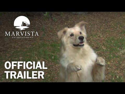 Cop Dog     MarVista Entertainment