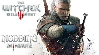 How to install mods in The Witcher 3 in 1 minute