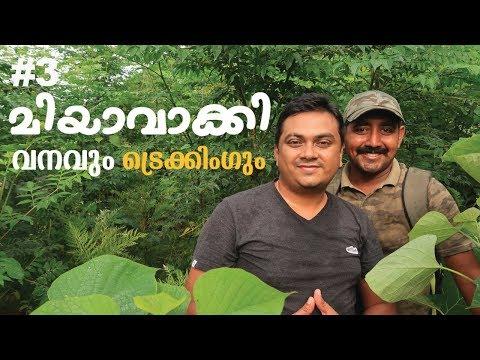 Miyawaki Forest & Trekking with Saleesh in SR Jungle Resort Anaikatti