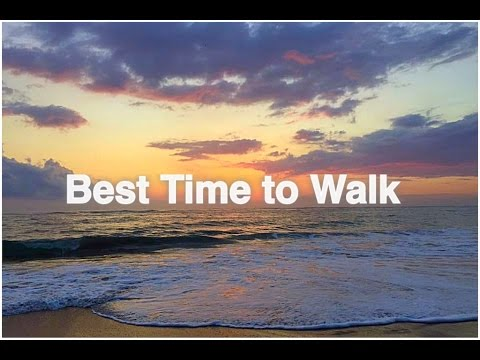 Best Time of Day To Walk | Experts Agree