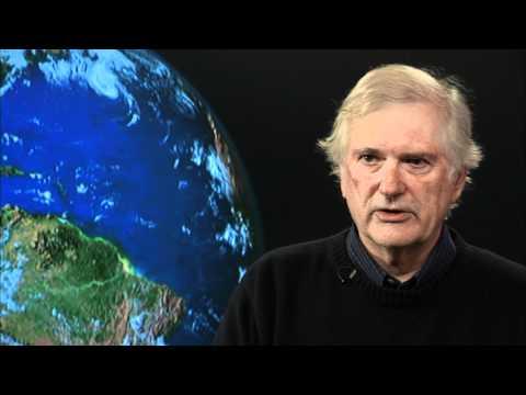 Uncut: Stephen Hubbell on species extinction estimates