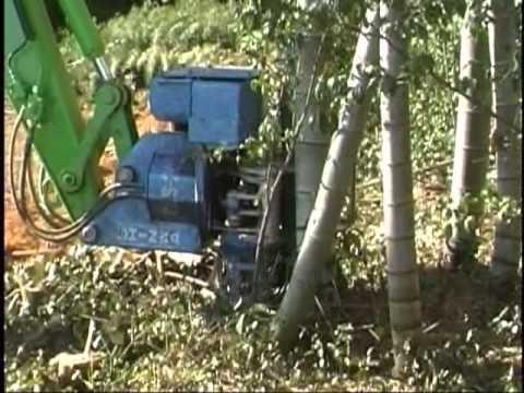 バンブーカッター 竹伐採機械 伐採片付け玉切りを1台で バックホーのアタッチメント