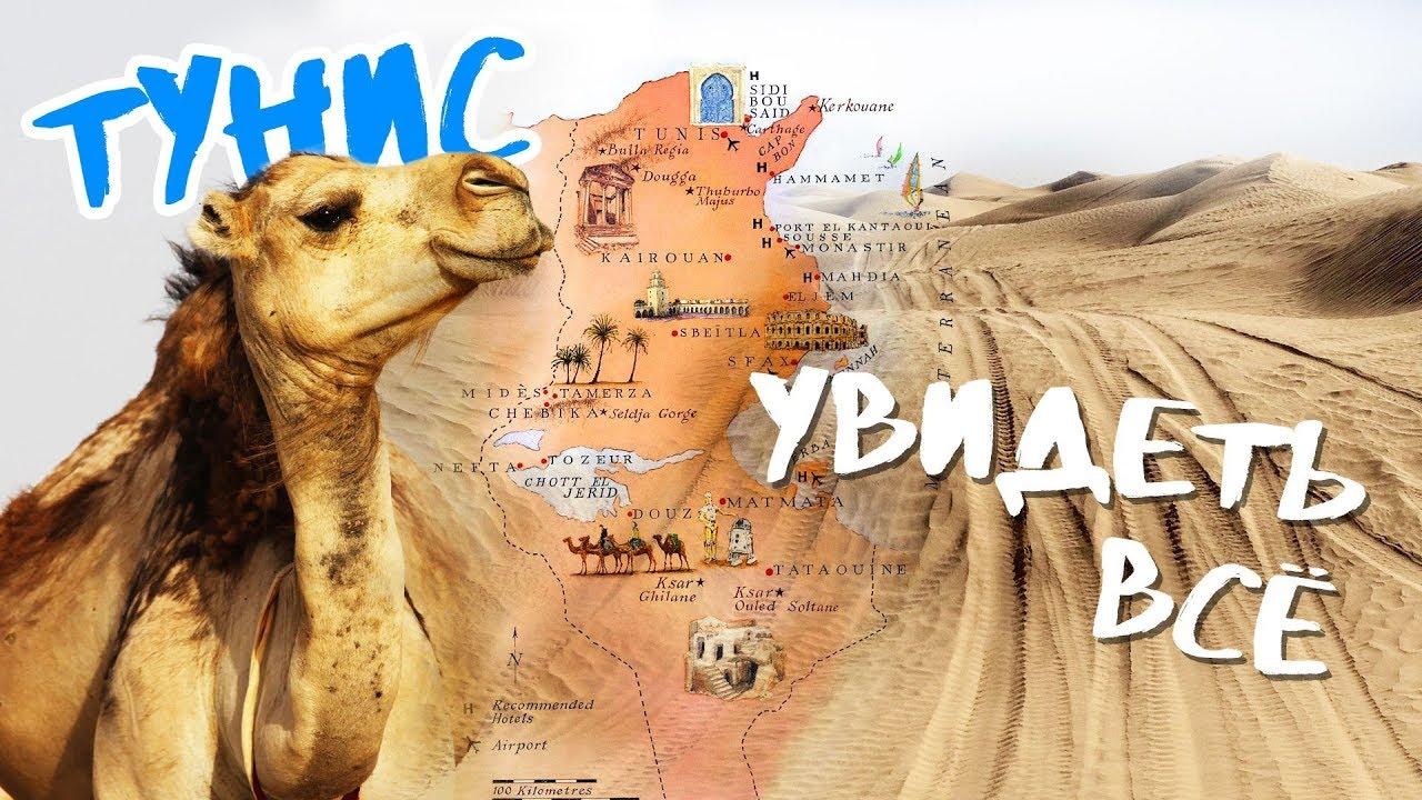 Всё, что стоит сделать и посмотреть в Тунисе | Тунис 2019