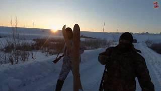 Один день на охоте с нами. февраль 2020 Охота на зайца.