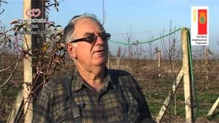 Jovan Đošić -  ZELETOVO / BOJNIK