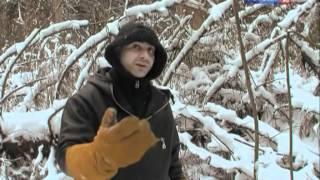Рейтинг Баженова самые опасные животные России часть18