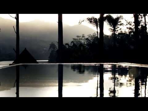 Luxury Tea Resort   Ceylon Tea Trails, Sri Lanka   Relax and Unwind