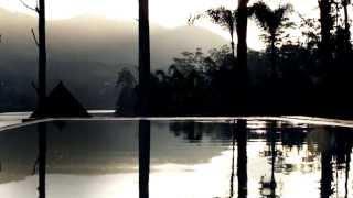 Luxury Tea Resort | Ceylon Tea Trails, Sri Lanka | Relax and Unwind