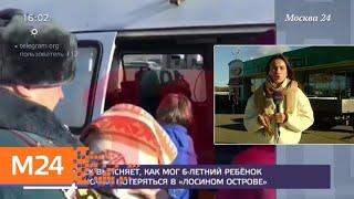 """По факту исчезновения ребенка в парке """"Лосиный остров"""" возбудили уголовное дело - Москва 24"""