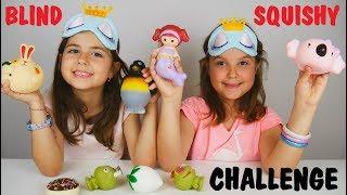 Squishy Παιχνίδια Στα Τυφλά Challenge / ARIADNI STAR / squishy toys blind challenge